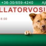 Tósoki Állatorvosi Rendelő Dr. Kovács Róbert