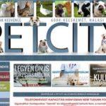 PetCity Állatorvosi rendelő - Kecskemét