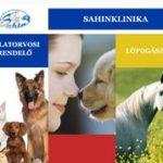 Sahinklinika - Vecsés - Állatorvosi rendelő