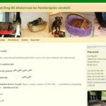 Cat-Dog Bt állatorvosi és fizioterápiás rendelő