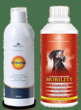 Arthropan + Mobility 500